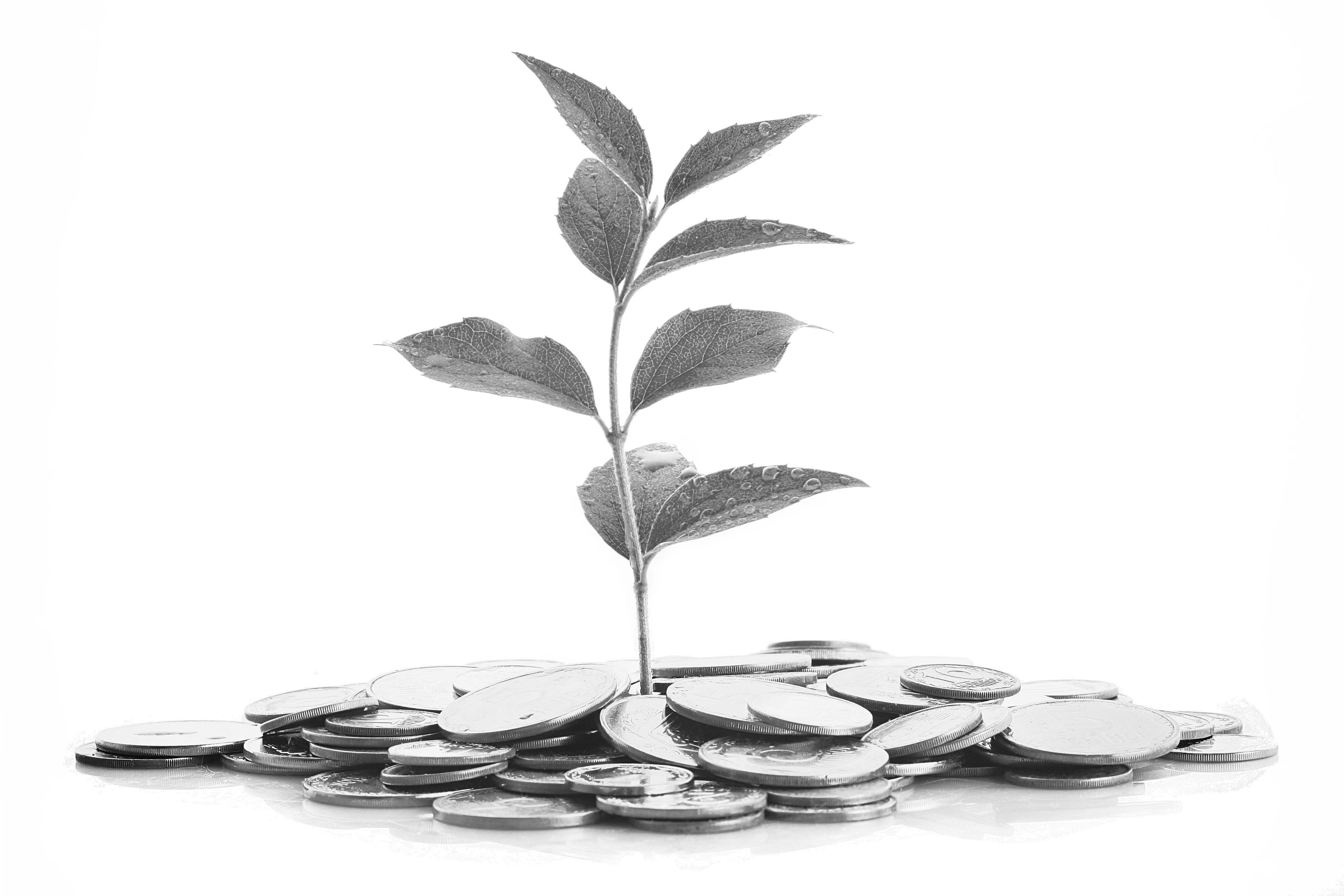 InvestingInPeople_Fotor